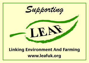 Supporting Leaf Sign